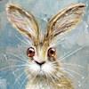 Catleighcat