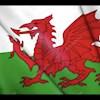 Welshman41